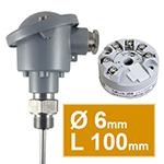 Sonde pt100 à visser avec tete B diam.6 L100mm avec convertisseur