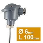 Pt100 lisse tête type B Ø6 L100mm simple